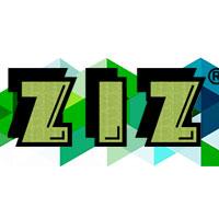Украинские часы ZIZ. Обзор ярких коллекций от отечественного производителя
